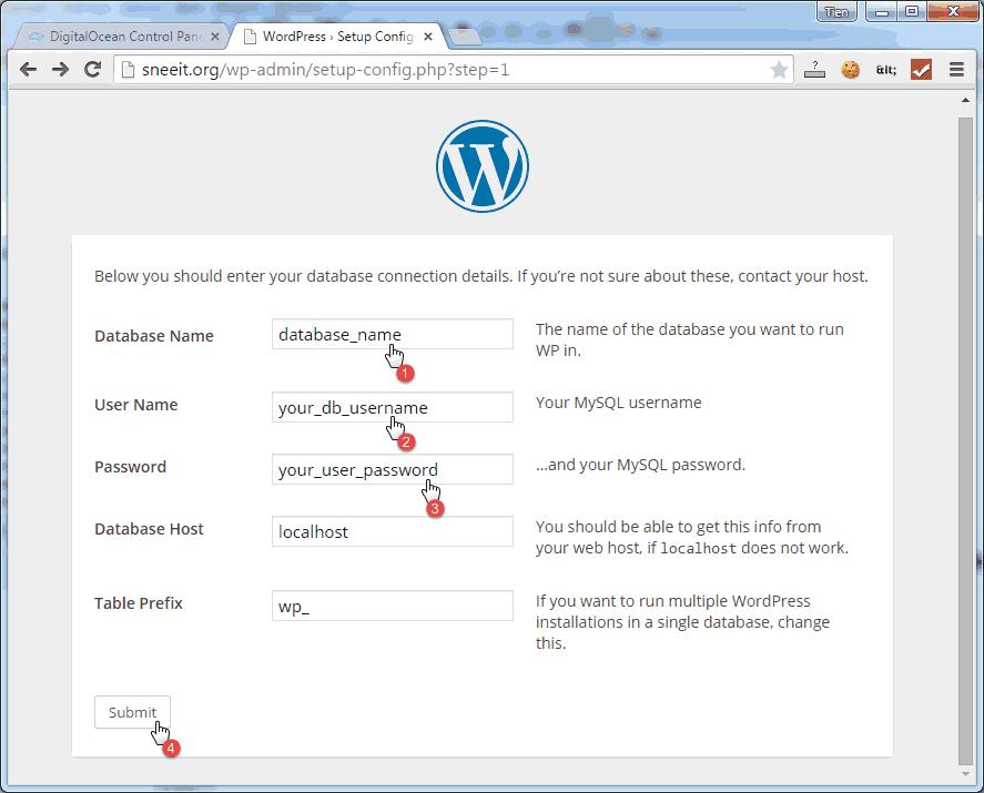 Wordpress Input Setup Information - Install Nginx for WordPress on Digital Ocean VPS Hosting with Centminmod (LEMP)